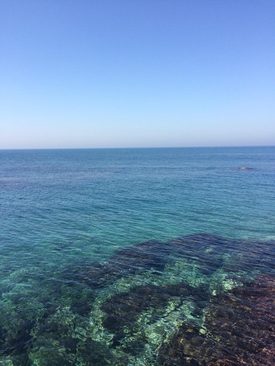 阿爾及爾港及附近地區  Alger Port   -1