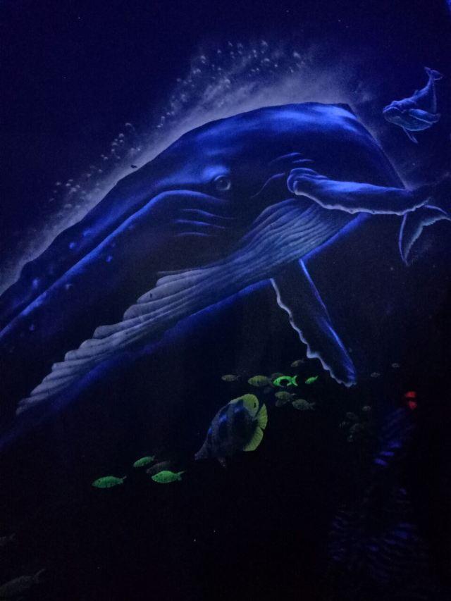 曲江公园海洋公园好玩,曲江视频攻略极地景50囧游戏最极地海洋图片