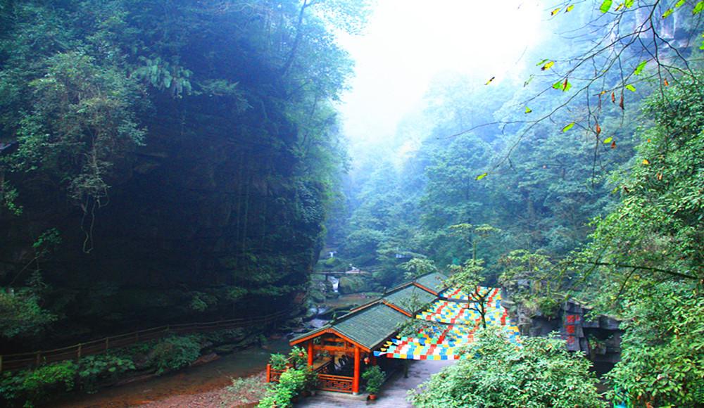 青云梯 day2:碧峰峡野生动物园 熊猫园位于碧峰峡风景区内,由猛兽