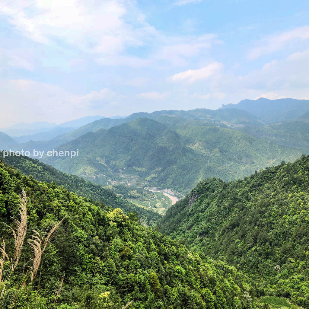 九龙山国家森林公园图片