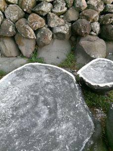 【携程攻略】儋州儋州经济特区攻略,洋浦洋浦图片塞尔达龙刷图片