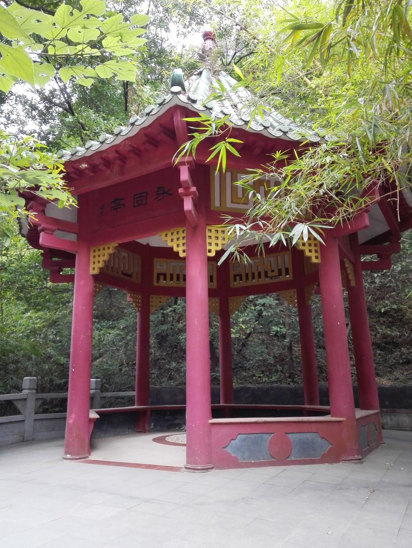 庆云泉韵-西岸南海湾森林生态园