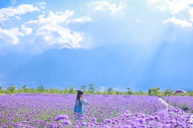 稻城桑堆红草地. 用了桔色上衣 彩色裙子,与背影色调融入,有能突出.