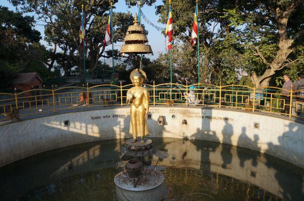 顶部金碧辉煌的大佛塔与周围的寺庙