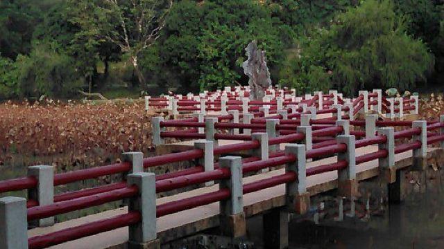 紫马岭里的嘤鸣谷是中山唯一的动物园),罗列有序.