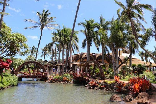 [原创]只有20多年历史茂宜岛植物园.夏威夷9.美国9