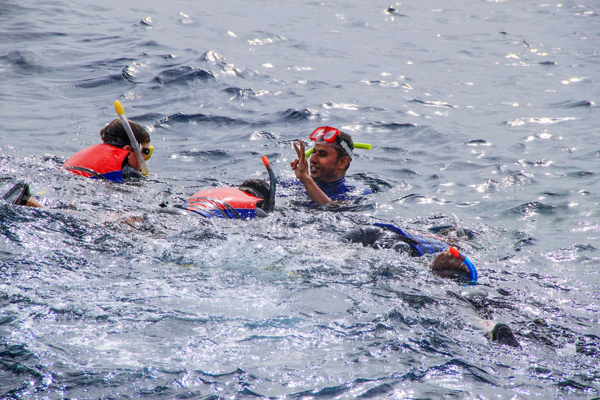 红海潜水  Dive Point   -1