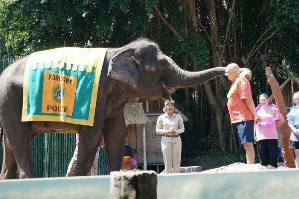 意外之旅—巴厘岛野生动物园亲子游