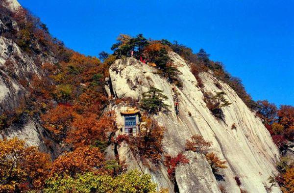 南充地区利用金城山的森林资源