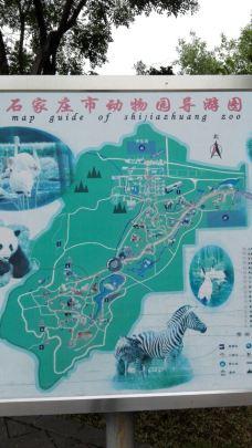 石家庄市动物园-石家庄-贾彦辉