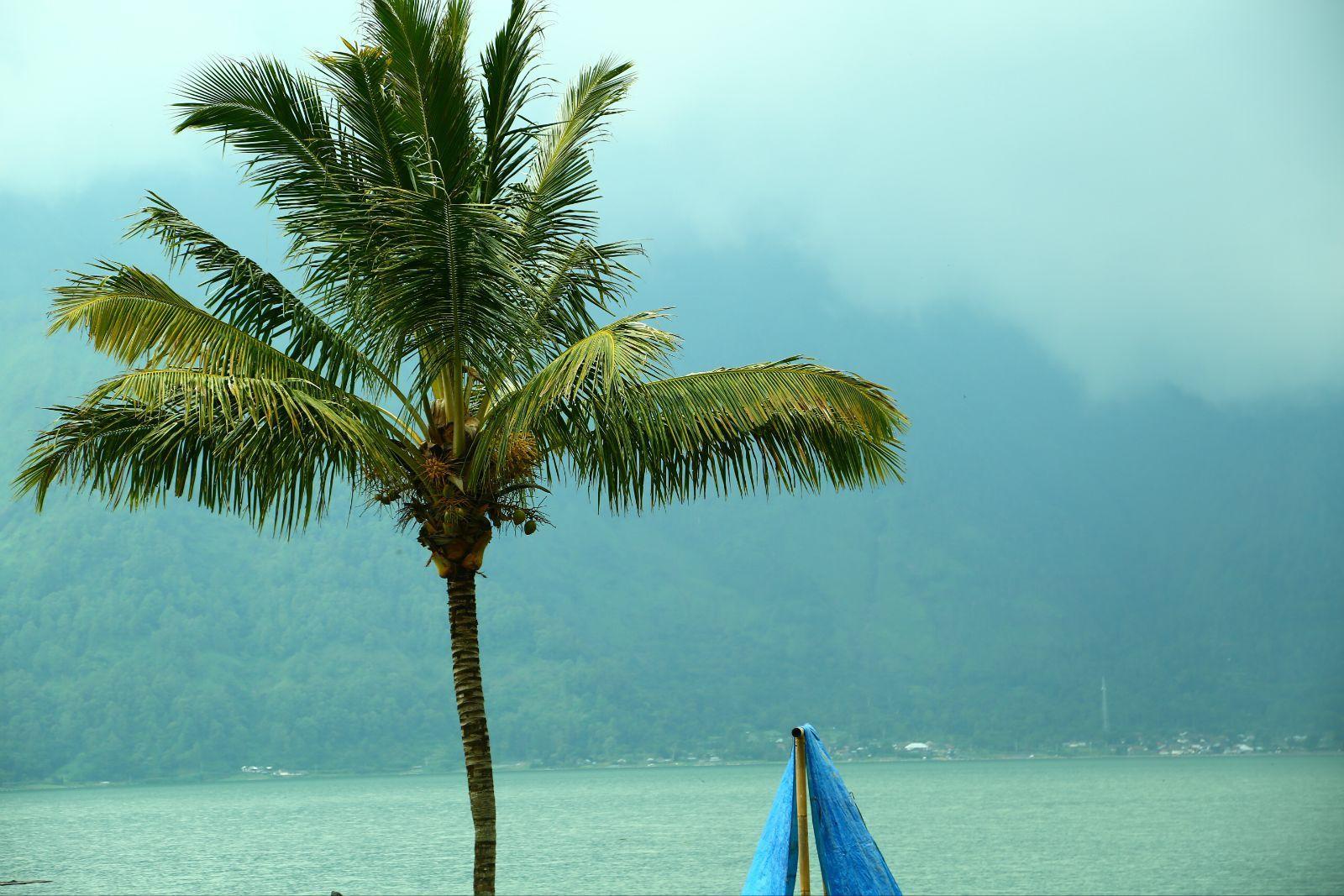 【我的年假】5 情迷巴厘岛(2)