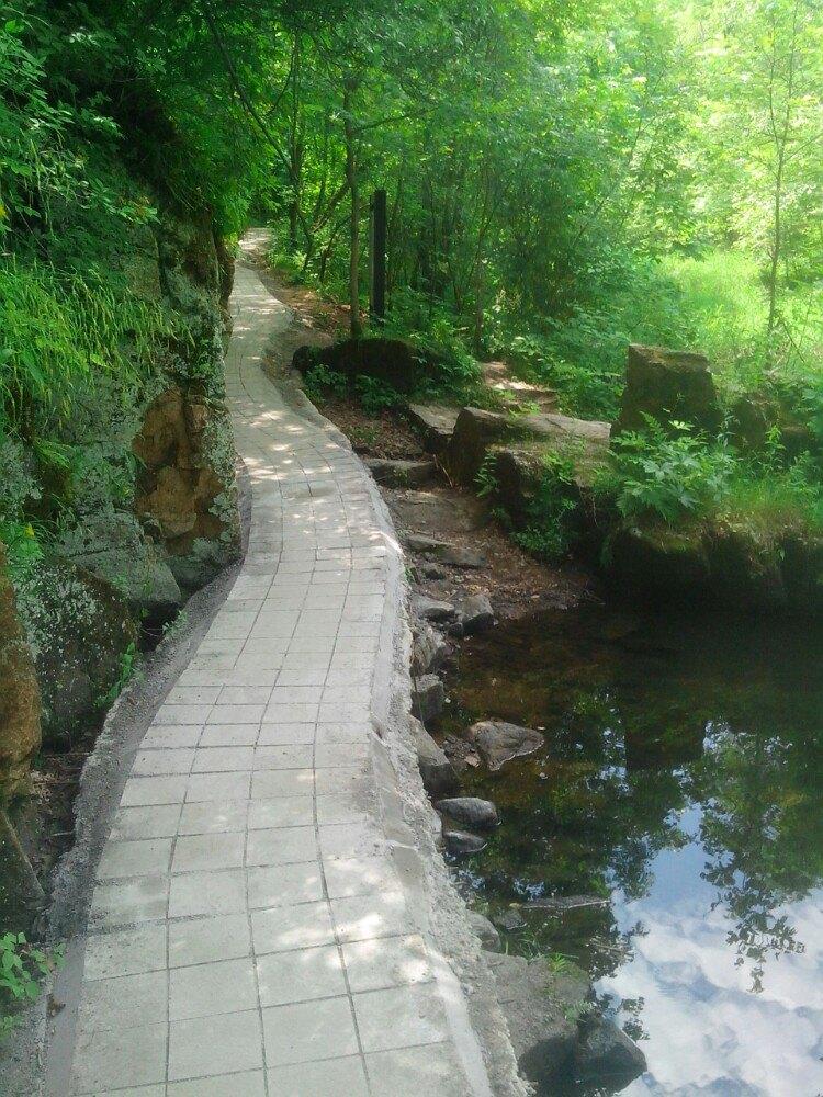 森林公园—汤旺河石林风景区—嘉荫恐龙地质公园—嘉图片