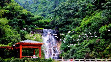郴州雄森国际假日酒店1晚 王仙岭旅游风景区成人票 双份自助早餐