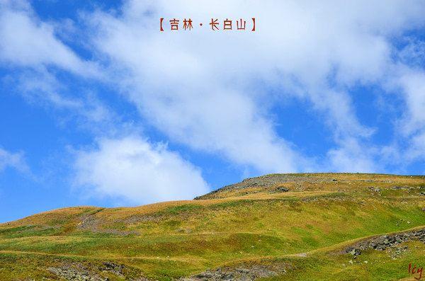 像windows经典桌面,蓝天白云高山草甸总是最能秒杀我