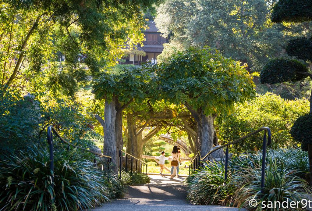 亨廷顿图书馆,艺术廊和植物园 亨廷顿图书馆,艺术廊和植物园