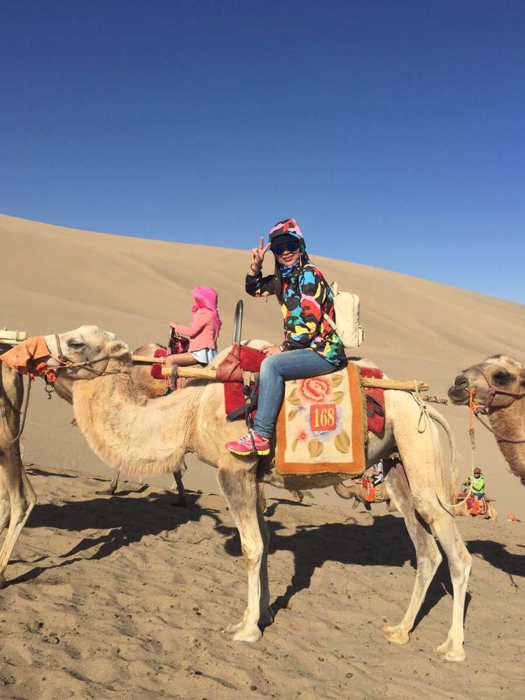 壁纸 骆驼 沙漠 桌面 750_1000 竖版 竖屏 手机
