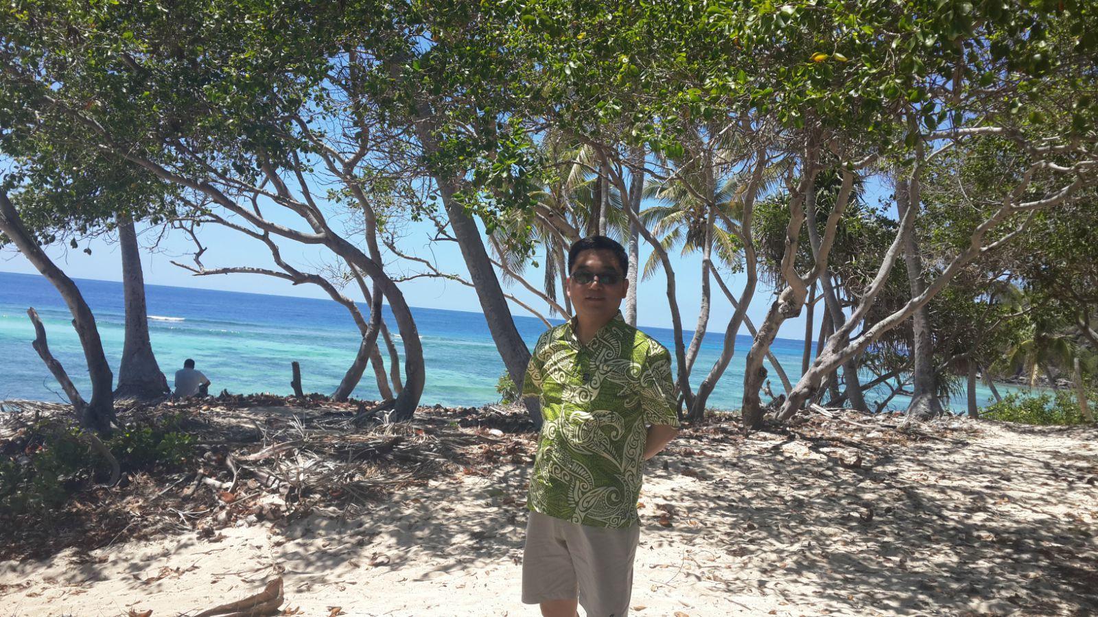 斐济服,斐济海,椰子树.