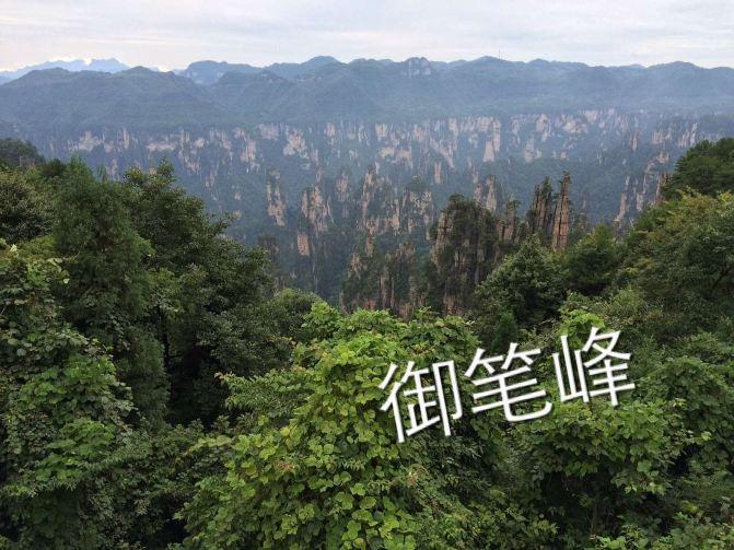 """摄于:张家界国家森林公园时间:2015.8.25 张家界国家森林公园旅游景区图国家计委批准成立的中国第一个国家森林公园,1992年12月因奇特的石英砂岩大峰林被联合国列入《世界自然遗产名录》,2004年2月被列入世界地质公园。公园自然风光以峰称奇、以谷显幽、以林见秀。其间有奇峰3000多座,这些石峰如人如兽、如器如物,形象逼真,气势壮观。峰间峡谷,溪流潺潺,浓荫蔽日。有""""三千奇峰,八百秀水""""之美称。公园不仅自然风光壮美绝伦,而且森林植物和野生动物资源极为丰富,森林覆盖率达98%,是一座巨大的生物宝库和"""