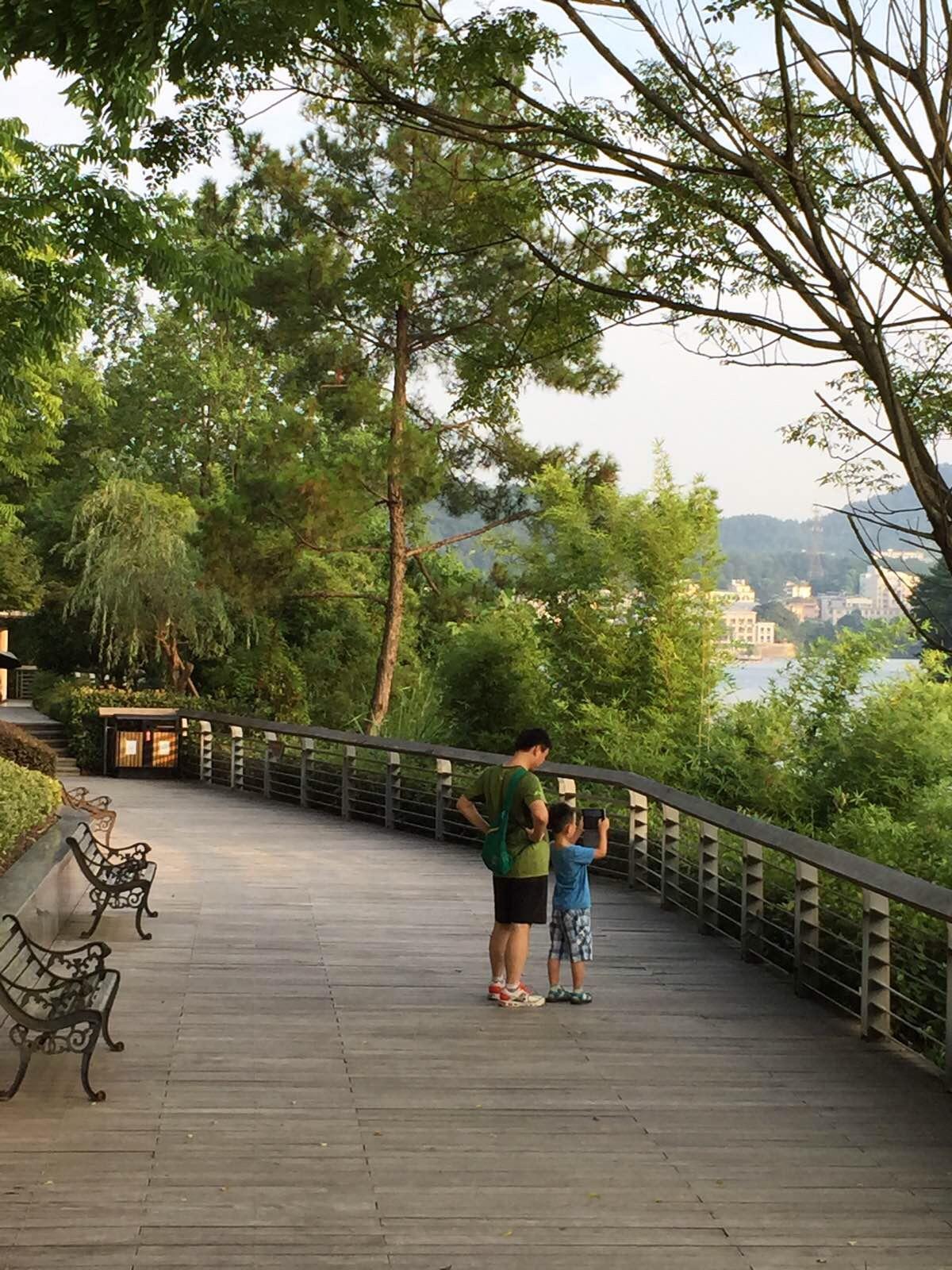 千岛湖滨水绿道