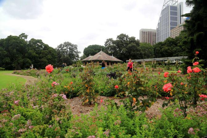 悉尼、堪培拉21日自由行⒁悉尼6-机械植物园-产品设计皇家v机械模具设计图片