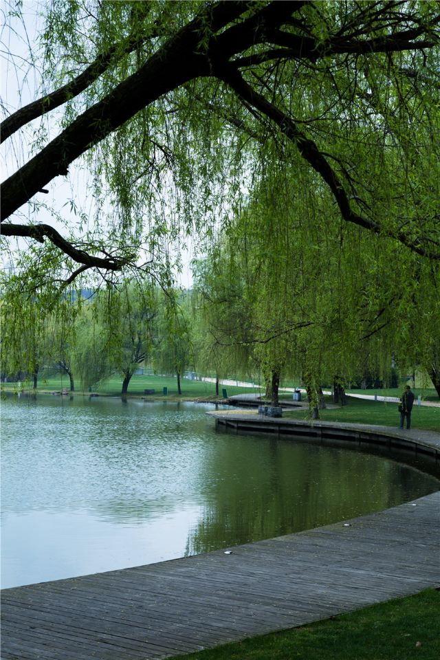 天目湖山水园 乘坐游船领略天目湖迷人的水上风光,提开天目湖那美丽