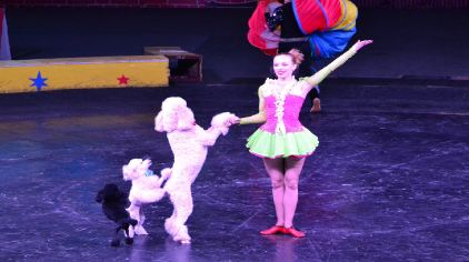 上海野生动物园俄罗斯国家大马戏云集了所有经典的马戏杂技节目,如