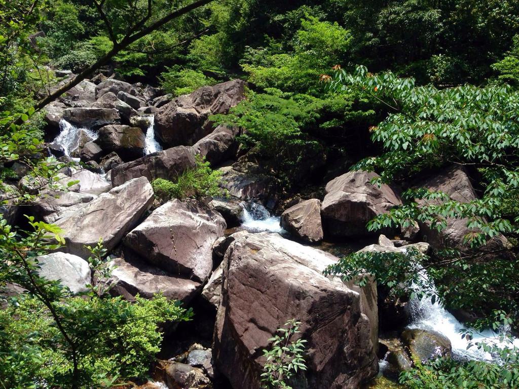花岩国家森林公园游记