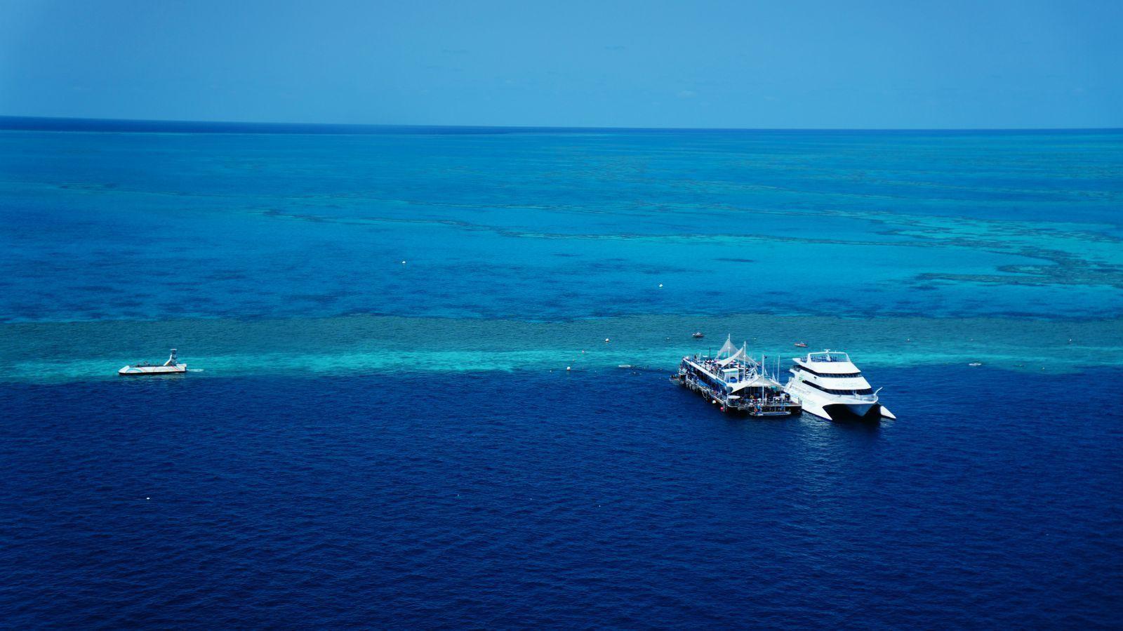 第一,浮潜当然要;第二,直升飞机很有必要,从船上和从飞机上看大堡礁是