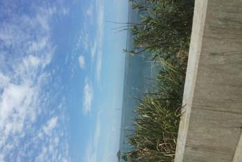9月周末2日嵊泗亲子岛景点自由行,游玩、住宿丽江旅拍攻略枸杞图片