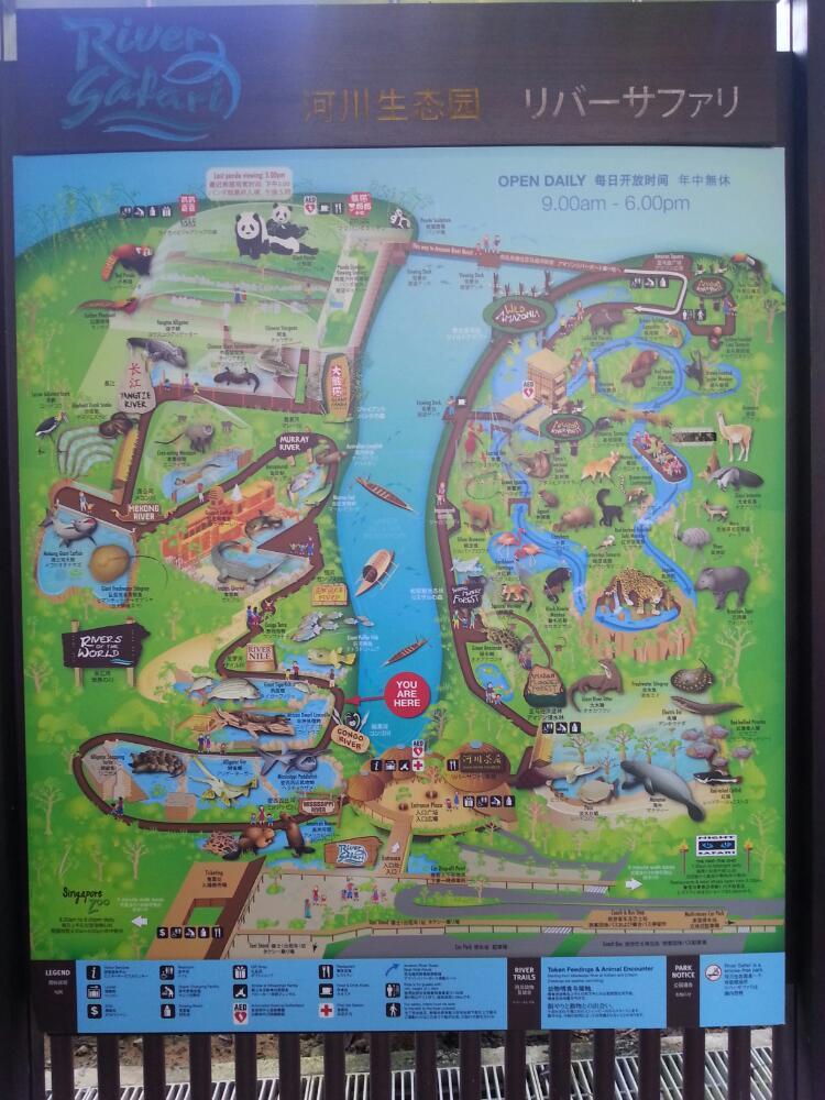 旅行】新加坡河川生态园一日游
