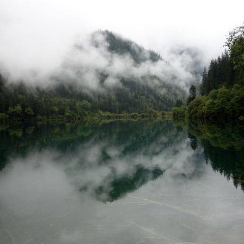 水色清澈透明,幽静深邃,四岸千年古木,竹影婆娑,奇花异草,倒影斑斓.