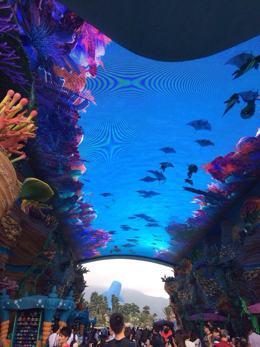 色彩鲜艳明丽,开阔大气,海洋王国整体觉得是海洋公园的放大版.