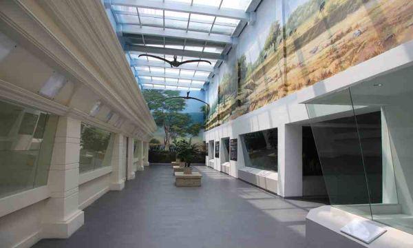 世界动物标本艺术馆