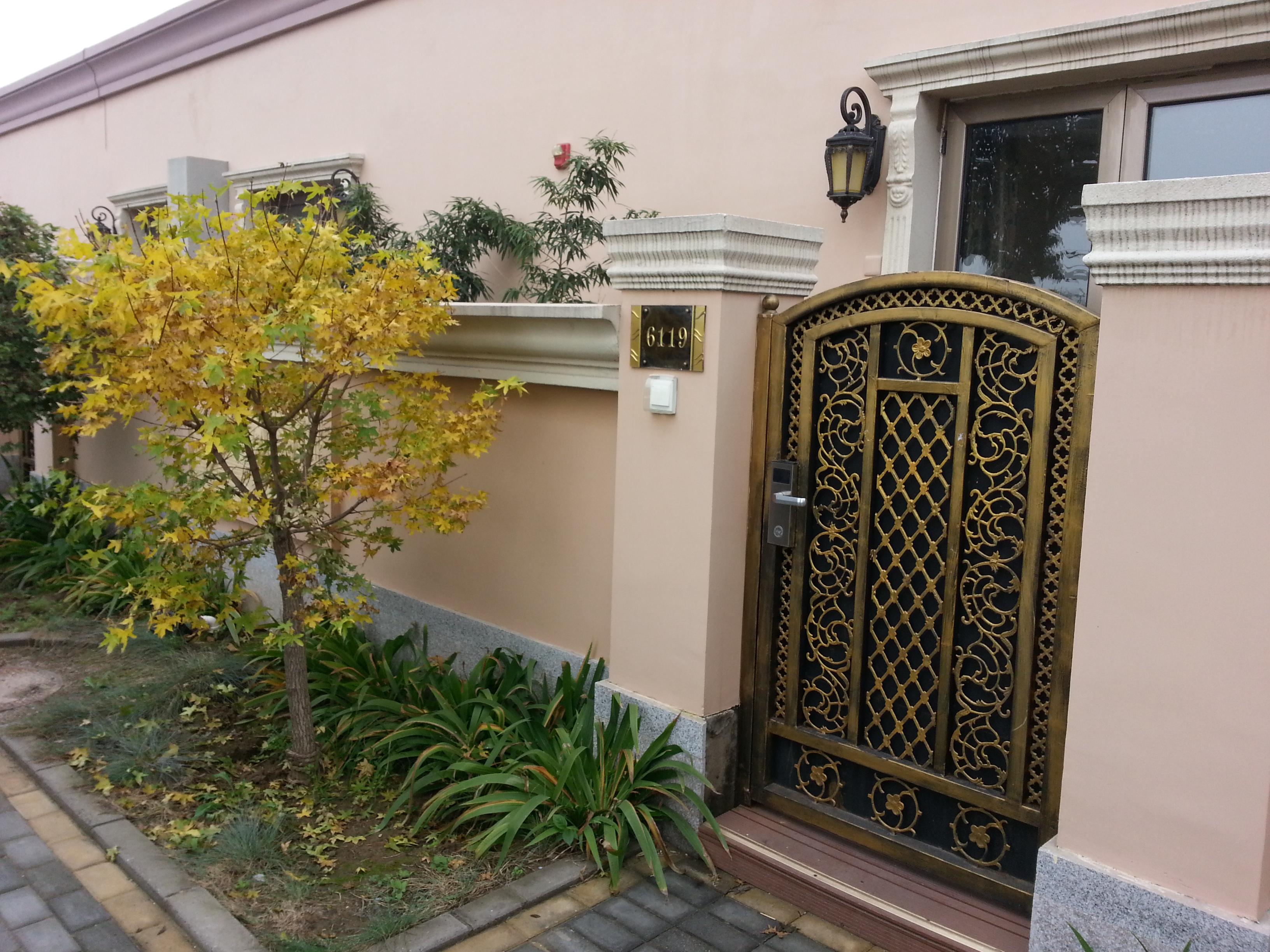 欧式小院门前的枫树,有秋天的feel
