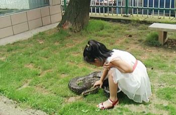 【携程攻略】株洲石峰公园动物园附近景点