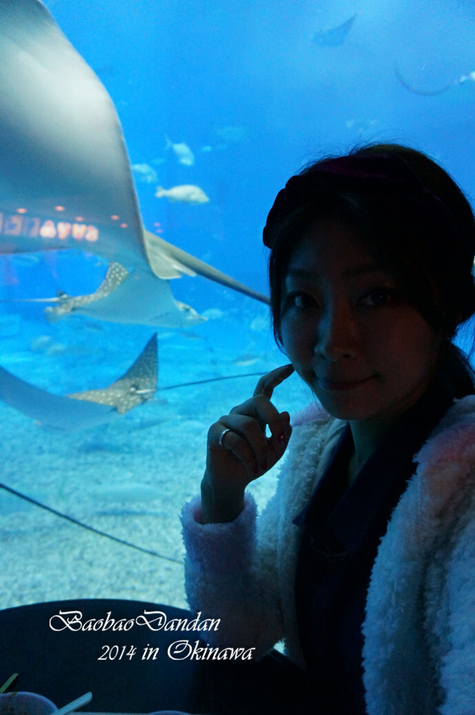 壁纸 海底 海底世界 海洋馆 水族馆 桌面 690_1038 竖版 竖屏 手机