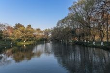茅家埠-杭州-山野幽居