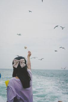 海驴岛-荣成-枫行Maple