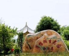 宿鸭湖-汝南-世界美食游走达人
