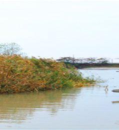 高邮游记图文-哪一年,我在江苏高邮市看运河秋色 ▏高邮自驾三日游实用攻略 ▏冬游苏、浙、皖实用攻略 ▏2020年