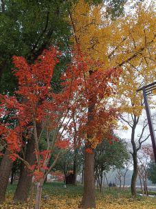 枫桥景区-苏州-alpha1015