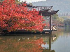 3日杭州+苏州