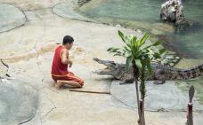 北榄鳄鱼湖动物园-Thai Ban-zhulei831230