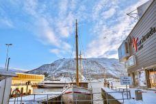 Tromso Domkirke-特罗姆瑟-翱翔的大鲨鱼
