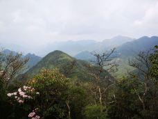 莽山国家森林公园-莽山