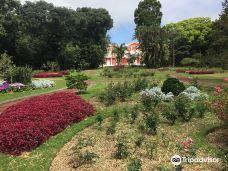 Palacios da Presidencia-蓬塔德尔加达