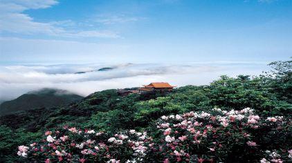 莽山国家森林公园 (1)