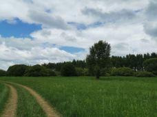 桦皮岭-张北-AURURA木木
