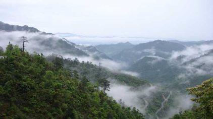 南岭国家森林公园4(新2016-11-11)