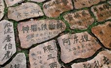 中国同里影视摄制基地-同里-吴立珍